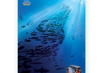 Phoenix Blue Marlin Ad (Seychelles)